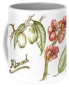 Almond With Flowers Coffee Mug by Teresa White