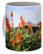 Aloe Vera And Tin Roof Plantation House Coffee Mug