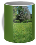 Alone In A Field Of Buttercups Coffee Mug