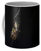 Along Came A Spider Coffee Mug