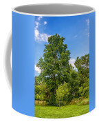 Along The Path 2 Coffee Mug