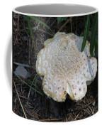 Along The Trail Coffee Mug