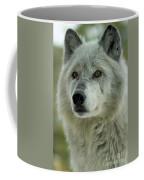 Alpha Curiosity Coffee Mug
