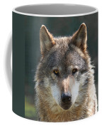 Alpha Male Wolf - I'm Watching You Coffee Mug