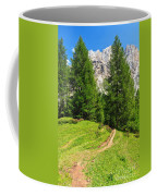 alpine path in Contrin Valley Coffee Mug