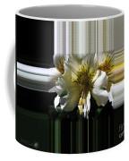Alstroemeria Named Marilene Staprilene Coffee Mug