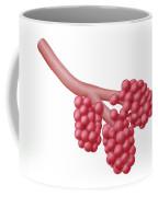 Alveoli Coffee Mug