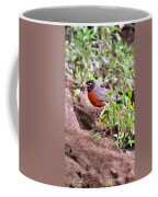 Am Robin Coffee Mug