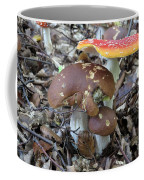 Amanita Muscaria And Edible Boletus Coffee Mug