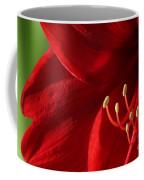 Amaryllis6739 Coffee Mug