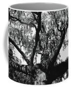 Amazing Oak Tree Coffee Mug