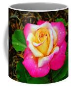 Amazing Red Yellow Rose Coffee Mug