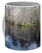 Reflections - On The - Silver River Coffee Mug