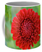 Amazingly Perfect Coffee Mug