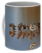 American Avocet And Sleeping Dowitchers Coffee Mug