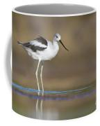 American Avocet Coffee Mug
