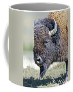 American Bison Closeup Coffee Mug