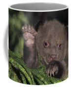 American Black Bear Cub Wildlife Rescue Coffee Mug