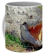American Crocodile Coffee Mug