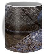 American Dipper   #2488 Coffee Mug