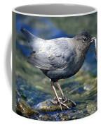 American Dipper Coffee Mug