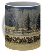 American Elk   #4305 Coffee Mug