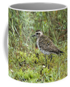 American Golden Plover Coffee Mug