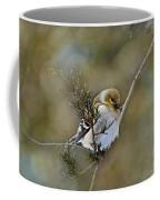 American Goldfinch On A Cedar Twig Coffee Mug