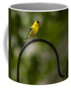 American Goldfinch Perched On A Shepherds Hook Coffee Mug