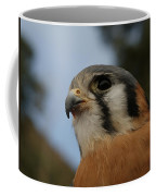American Kestrel 2 Coffee Mug