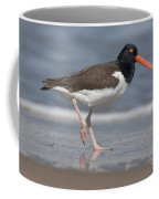 American Oystercatcher On Beach Coffee Mug