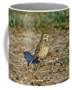 American Pipit Coffee Mug