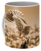 American Red Tail Hawk Coffee Mug
