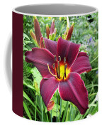American Revolution Daylily Coffee Mug