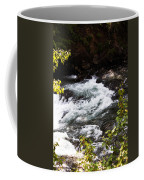 American River's Levels Coffee Mug
