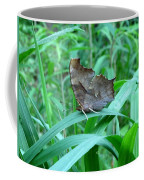 American Snout Butterfly Coffee Mug