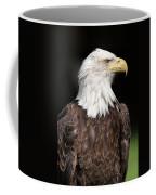 American Symbol Coffee Mug