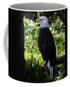 American Symbol Two Coffee Mug