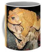 American Toads  Coffee Mug
