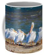 American White Pelicans Coffee Mug