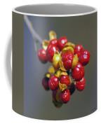 American Winterberry Coffee Mug