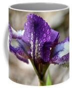 Amethyst Beardie Coffee Mug