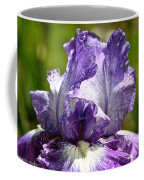 Amethyst Iris Coffee Mug