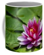Among The Lily Pads Coffee Mug