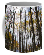 Amongst The Trees Coffee Mug