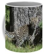 Amur Leopard Cub Antics Coffee Mug