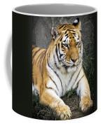 Amur Tiger Coffee Mug