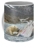 An Adult Polar Bear Ursus Maritimus Coffee Mug