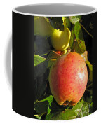 An Apple After Frost Coffee Mug
