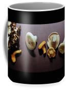 An Assortment Of Mushrooms Coffee Mug